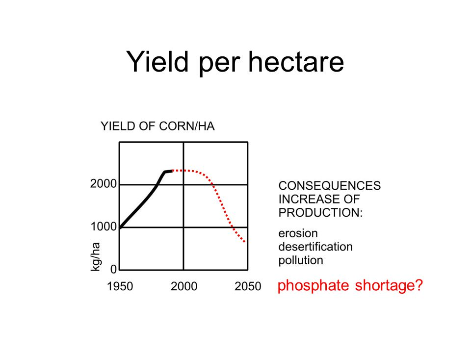Yield per hectare phosphate shortage