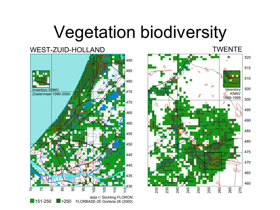 Vegetation biodiversity