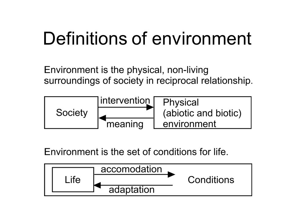 Definitions of environment