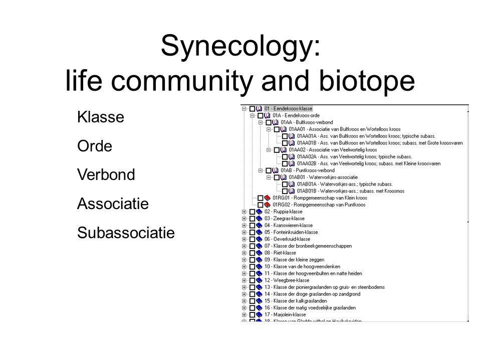 Synecology: life community and biotope Klasse Orde Verbond Associatie Subassociatie