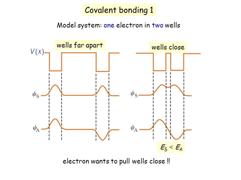 Covalent bonding 1 Model system: one electron in two wells wells far apart wells close ES < EAES < EA electron wants to pull wells close !!