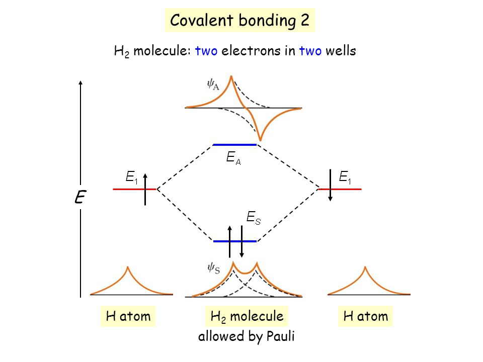 Covalent bonding 2 H 2 molecule: two electrons in two wells E H atom H 2 molecule allowed by Pauli