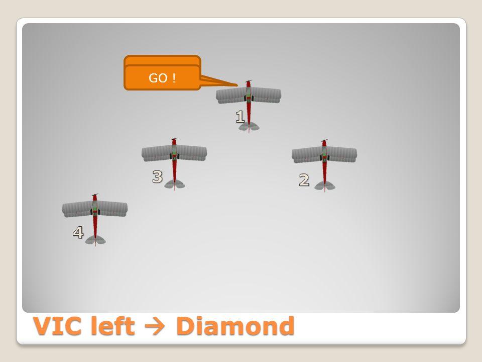 VIC left  Line Astern Seppe Formation Line Astern GO ! Seppe 4