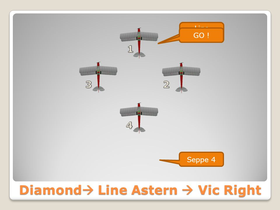 Diamond  Line Astern Seppe Formation Line Astern GO ! Seppe 4