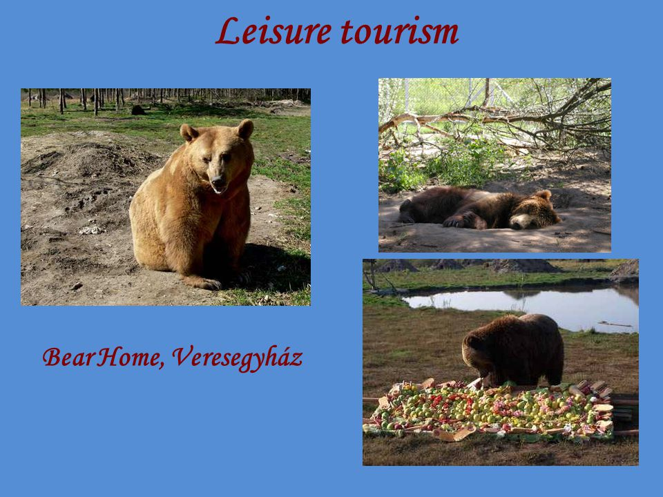 Leisure tourism Bear Home, Veresegyház