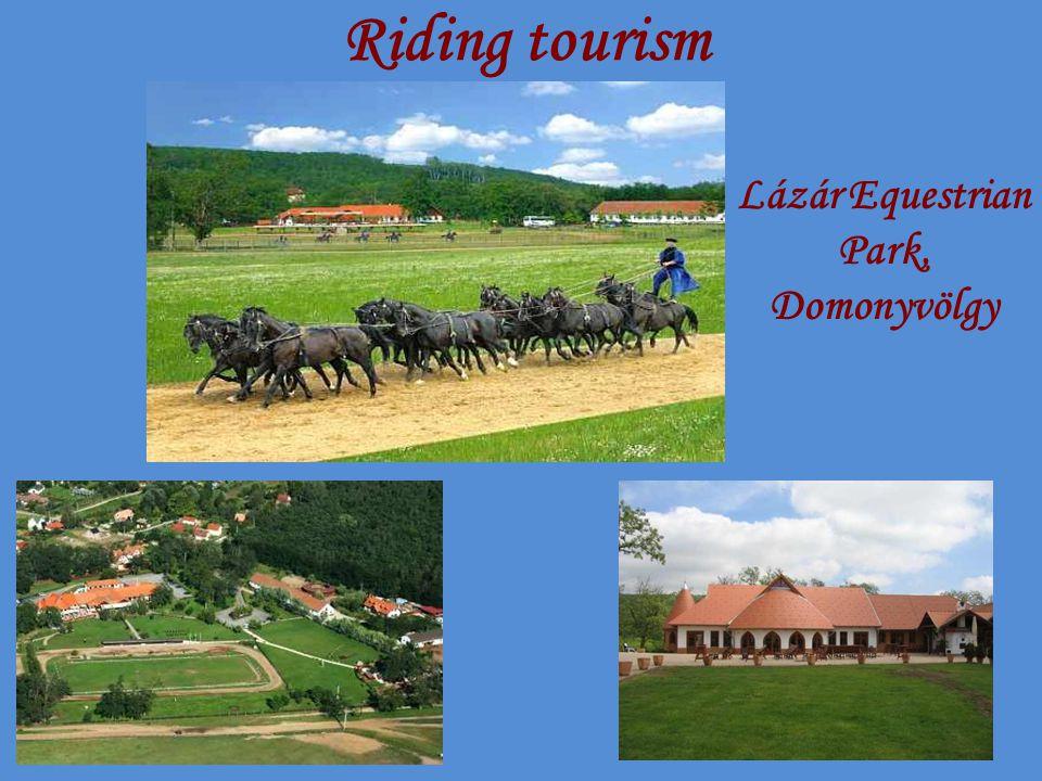Riding tourism Lázár Equestrian Park, Domonyvölgy