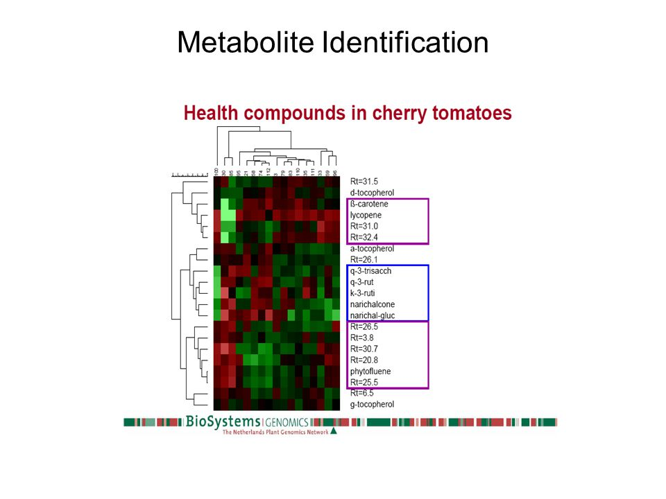 Metabolite Identification