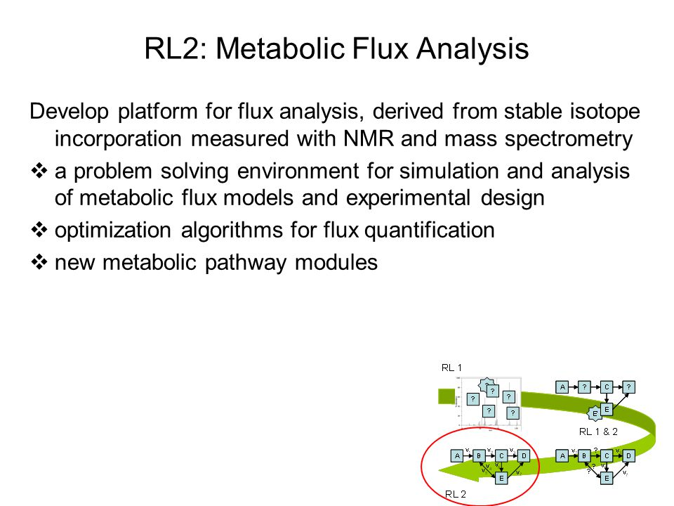 RL2: Metabolic Flux Analysis Develop platform for flux analysis, derived from stable isotope incorporation measured with NMR and mass spectrometry  a problem solving environment for simulation and analysis of metabolic flux models and experimental design  optimization algorithms for flux quantification  new metabolic pathway modules