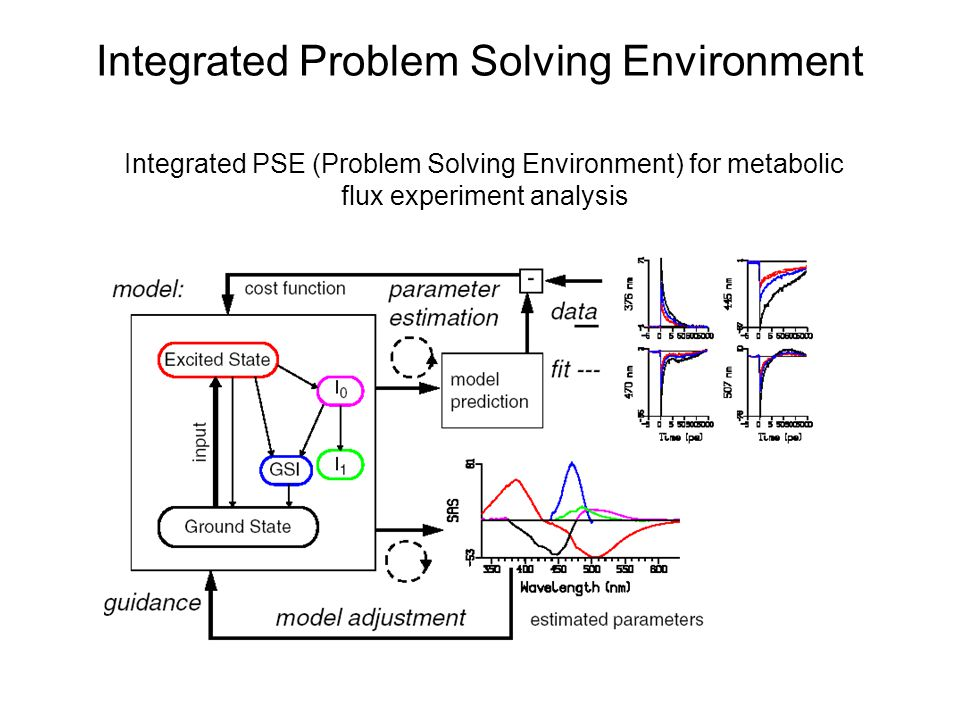 Integrated Problem Solving Environment Integrated PSE (Problem Solving Environment) for metabolic flux experiment analysis