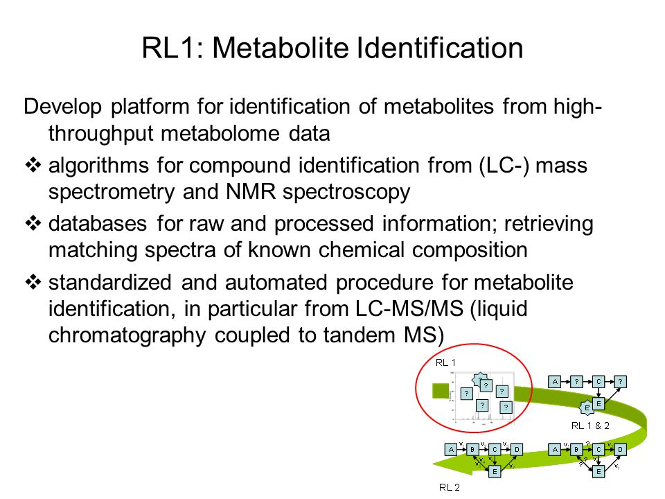 RL1: Metabolite Identification Develop platform for identification of metabolites from high- throughput metabolome data  algorithms for compound identification from (LC-) mass spectrometry and NMR spectroscopy  databases for raw and processed information; retrieving matching spectra of known chemical composition  standardized and automated procedure for metabolite identification, in particular from LC-MS/MS (liquid chromatography coupled to tandem MS)