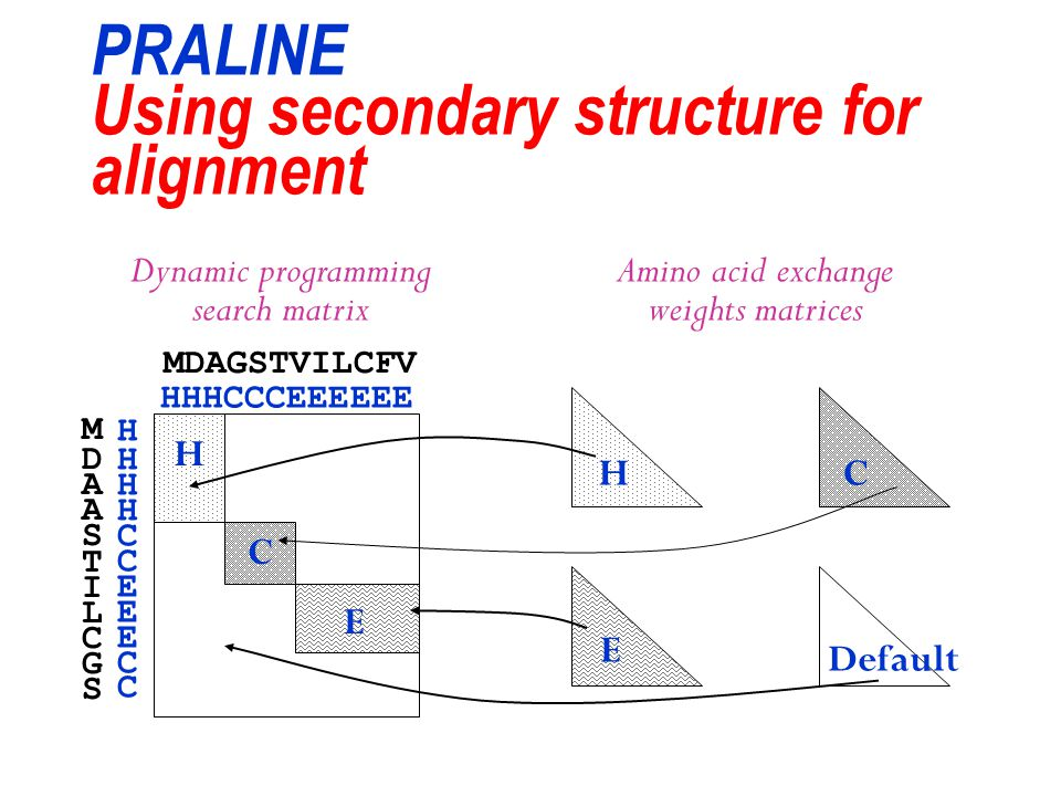PRALINE Using secondary structure for alignment Dynamic programming search matrix Amino acid exchange weights matrices MDAGSTVILCFV HHHCCCEEEEEE MDAAS