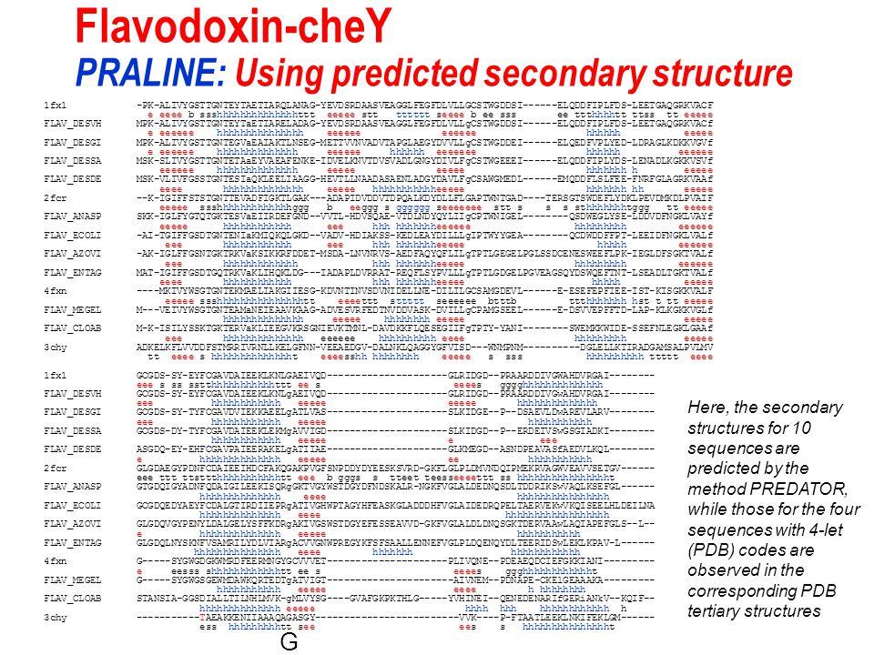 Flavodoxin-cheY PRALINE: Using predicted secondary structure 1fx1 -PK-ALIVYGSTTGNTEYTAETIARQLANAG-YEVDSRDAASVEAGGLFEGFDLVLLGCSTWGDDSI------ELQDDFIPLFDS-LEETGAQGRKVACF e eeee b ssshhhhhhhhhhhhhhttt eeeee stt tttttt seeee b ee sss ee ttthhhhtt ttss tt eeeee FLAV_DESVH MPK-ALIVYGSTTGNTEYTaETIARELADAG-YEVDSRDAASVEAGGLFEGFDLVLLgCSTWGDDSI------ELQDDFIPLFDS-LEETGAQGRKVACf e eeeeee hhhhhhhhhhhhhhh eeeeee eeeeee hhhhhh eeeee FLAV_DESGI MPK-ALIVYGSTTGNTEGVaEAIAKTLNSEG-METTVVNVADVTAPGLAEGYDVVLLgCSTWGDDEI------ELQEDFVPLYED-LDRAGLKDKKVGVf e eeeeee hhhhhhhhhhhhhh eeeeee hhhhhh eeeeeee hhhhhh eeeeee FLAV_DESSA MSK-SLIVYGSTTGNTETAaEYVAEAFENKE-IDVELKNVTDVSVADLGNGYDIVLFgCSTWGEEEI------ELQDDFIPLYDS-LENADLKGKKVSVf eeeeee hhhhhhhhhhhhhh eeeee eeeee hhhhhhh h eeeee FLAV_DESDE MSK-VLIVFGSSTGNTESIaQKLEELIAAGG-HEVTLLNAADASAENLADGYDAVLFgCSAWGMEDL------EMQDDFLSLFEE-FNRFGLAGRKVAAf eeee hhhhhhhhhhhhhh eeeee hhhhhhhhhhheeeee hhhhhhh hh eeeee 2fcr --K-IGIFFSTSTGNTTEVADFIGKTLGAK---ADAPIDVDDVTDPQALKDYDLLFLGAPTWNTGAD----TERSGTSWDEFLYDKLPEVDMKDLPVAIF eeeee ssshhhhhhhhhhhhhggg b eeggg s gggggg seeeeeee stt s s s sthhhhhhhtggg tt eeeee FLAV_ANASP SKK-IGLFYGTQTGKTESVaEIIRDEFGND--VVTL-HDVSQAE-VTDLNDYQYLIIgCPTWNIGEL--------QSDWEGLYSE-LDDVDFNGKLVAYf eeeee hhhhhhhhhhhh eee hhh hhhhhhheeeeee hhhhhhhhh eeeeee FLAV_ECOLI -AI-TGIFFGSDTGNTENIaKMIQKQLGKD--VADV-HDIAKSS-KEDLEAYDILLLgIPTWYYGEA--------QCDWDDFFPT-LEEIDFNGKLVALf eee hhhhhhhhhhhh eee hhh hhhhhhheeeee hhhhh eeeeee FLAV_AZOVI -AK-IGLFFGSNTGKTRKVaKSIKKRFDDET-MSDA-LNVNRVS-AEDFAQYQFLILgTPTLGEGELPGLSSDCENESWEEFLPK-IEGLDFSGKTVALf eee hhhhhhhhhhhhh hhh hhhhhhheeeee hhhhhhhhh eeeeee FLAV_ENTAG MAT-IGIFFGSDTGQTRKVaKLIHQKLDG---IADAPLDVRRAT-REQFLSYPVLLLgTPTLGDGELPGVEAGSQYDSWQEFTNT-LSEADLTGKTVALf eeee hhhhhhhhhhhh hhh hhhhhhheeeee hhhhh eeeee 4fxn ----MKIVYWSGTGNTEKMAELIAKGIIESG-KDVNTINVSDVNIDELLNE-DILILGCSAMGDEVL------E-ESEFEPFIEE-IST-KISGKKVALF eeeee ssshhhhhhhhhhhhhhhtt eeeettt sttttt seeeeee btttb ttthhhhhhh hst t tt eeeee FLAV_MEGEL M---VEIVYWSGTGNTEAMaNEIEAAVK