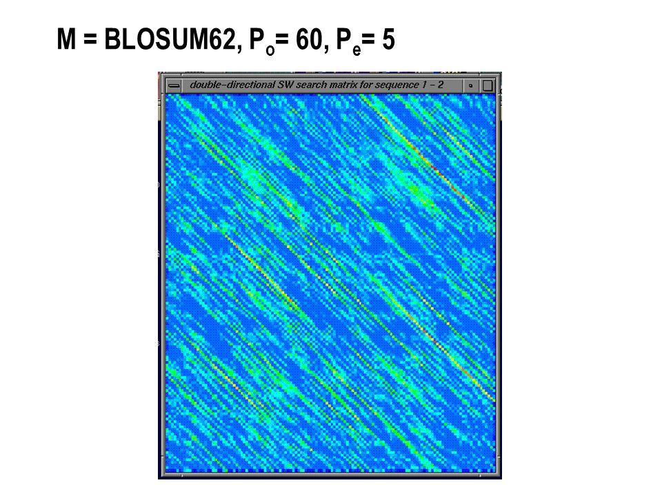 M = BLOSUM62, P o = 60, P e = 5