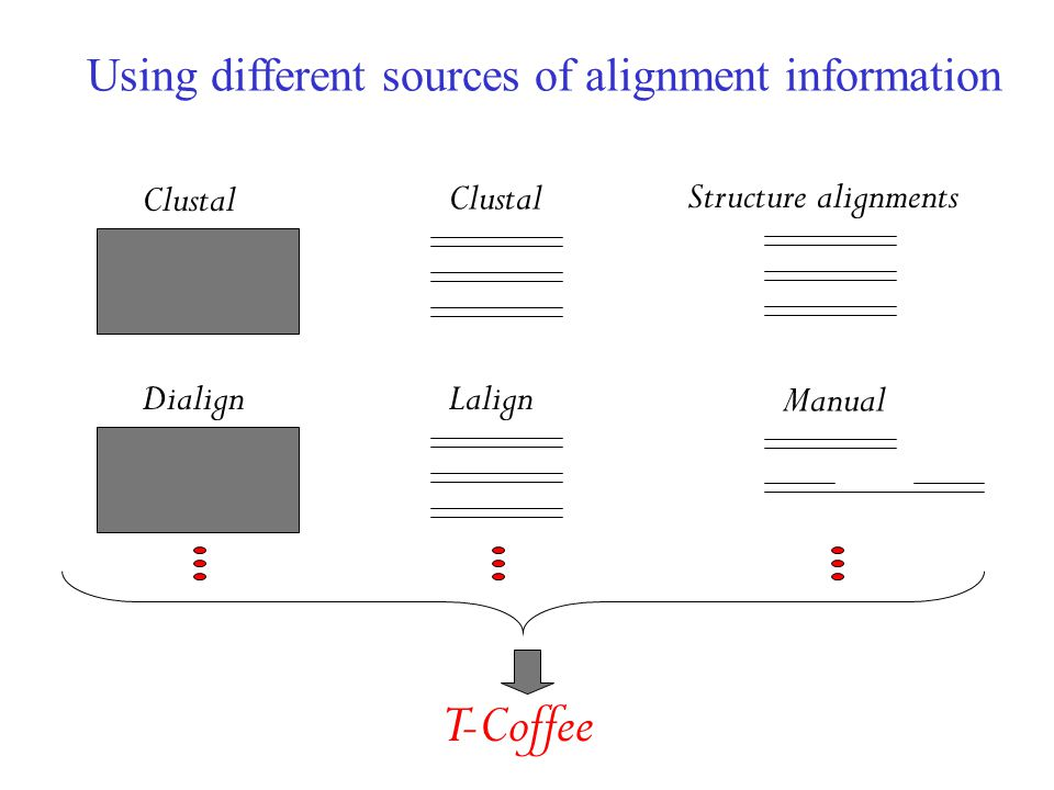 Using different sources of alignment information Clustal Dialign Clustal Lalign Structure alignments Manual T-Coffee