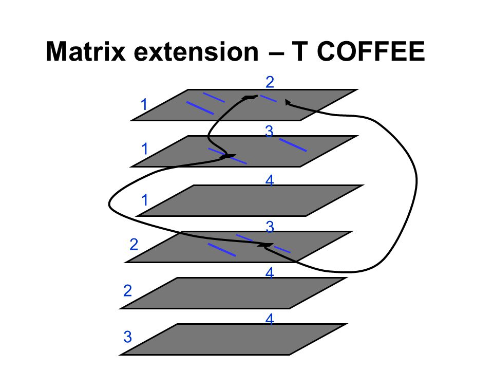 Matrix extension – T COFFEE 1 2 1 3 1 4 2 3 2 4 3 4