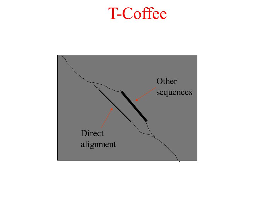 T-Coffee Direct alignment Other sequences
