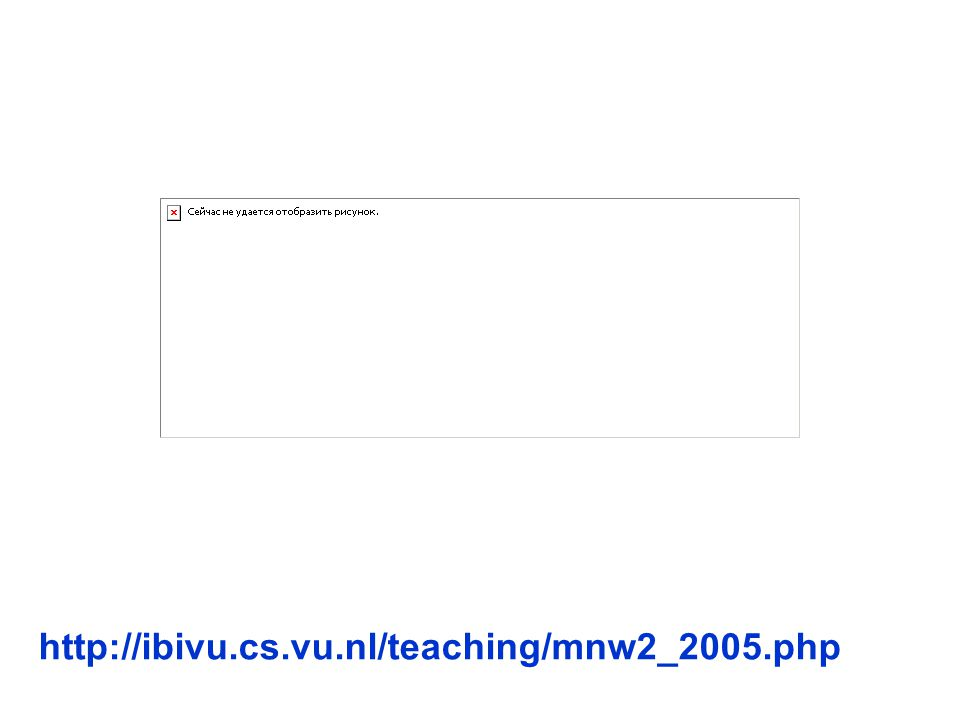 http://ibivu.cs.vu.nl/teaching/mnw2_2005.php