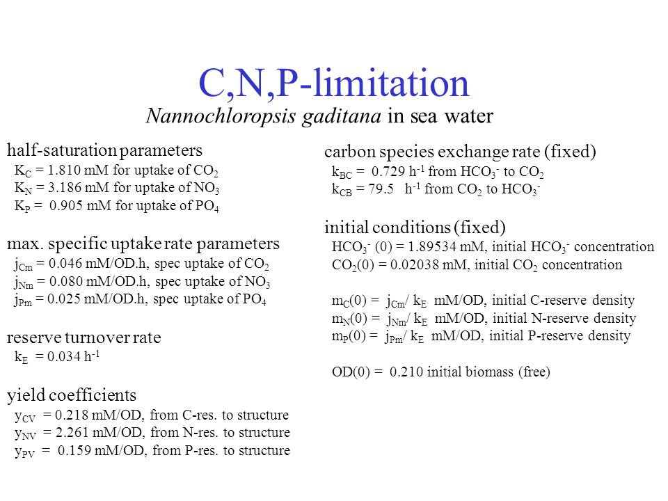 C,N,P-limitation half-saturation parameters K C = 1.810 mM for uptake of CO 2 K N = 3.186 mM for uptake of NO 3 K P = 0.905 mM for uptake of PO 4 max.