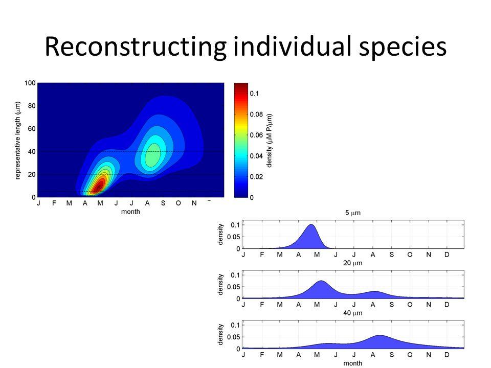 Reconstructing individual species