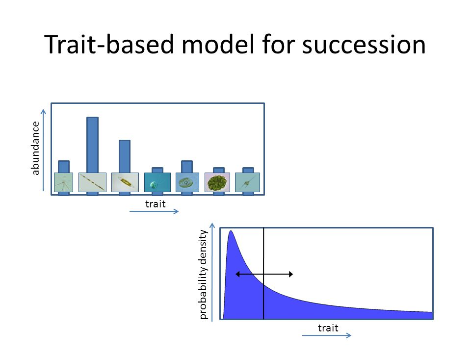 Linking model and observations bulk variables abundances of individual species field/laboratory bulk variables trait mean and variance trait-based model database parameter values of individual species identify traits and trade-offs reconstruct species abundances