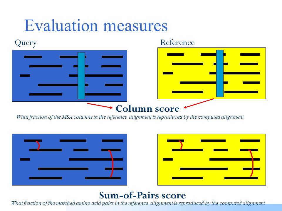 Scoring a single MSA with the Sum-of-pairs (SP) score Sum-of-Pairs score Calculate the sum of all pairwise alignment scores This is equivalent to taking the sum of all matched a.a.