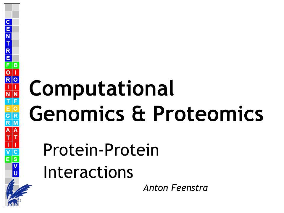 C E N T R F O R I N T E G R A T I V E B I O I N F O R M A T I C S V U E Anton Feenstra Computational Genomics & Proteomics Protein-Protein Interactions