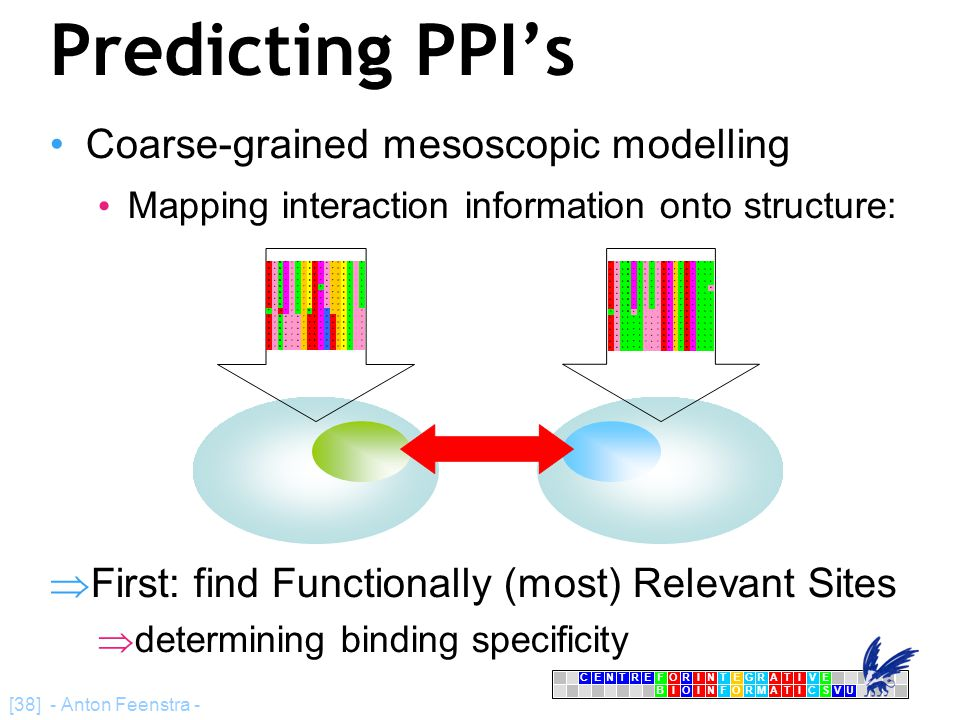 CENTRFORINTEGRATIVE BIOINFORMATICSVU E [38] - Anton Feenstra - Predicting PPI's Coarse-grained mesoscopic modelling Mapping interaction information onto structure:  First: find Functionally (most) Relevant Sites  determining binding specificity DLQPVTYCEPAFWCSIS DLQPVTYCEPAFWCSIS DLQPVTYCEPAFWCSIS DLQPVTYCEPAFWCSIS DLQPVTYCESAFWCSIS DLQPVTYCEPAFWCSIS DLQPVTYCEPAFWCSIS DLQPVTYCEPAFWCSIS TMHPVNYQEPKYWCSIV DVQAVAYEEPKHWCSIV DVQAVAYEEPKHWCSIV DVQAVAYEEPKHWCSIV DVQAVAYEEPKHWCSIV DVQAVAYEEPKHWCSIV DVQAVAYEEPKHWCSIV HASQPSMTVDGFTDPSNS HASQPSMTVDGFTDPSNS HASQPSMTVDGFTDPSNS HASQPSMTVDGFTDPSNS HASQPSLTVDGFTDPSNA HASQPSMTVDGFTDPSNS HASQPSMTVDGFTDPSNS HASQPSMTVDGFTDPSNS NASQLSIIIDGFTDPSNN HASSTSVLVDGFTDPSNN HASSTSVLVDGFTDPSNN HASSTSVLVDGFTDPSNN HASSTSVLVDGFTDPSNN HASSTSVLVDGFTDPSNN HASSTSILVDGFTDPSNN