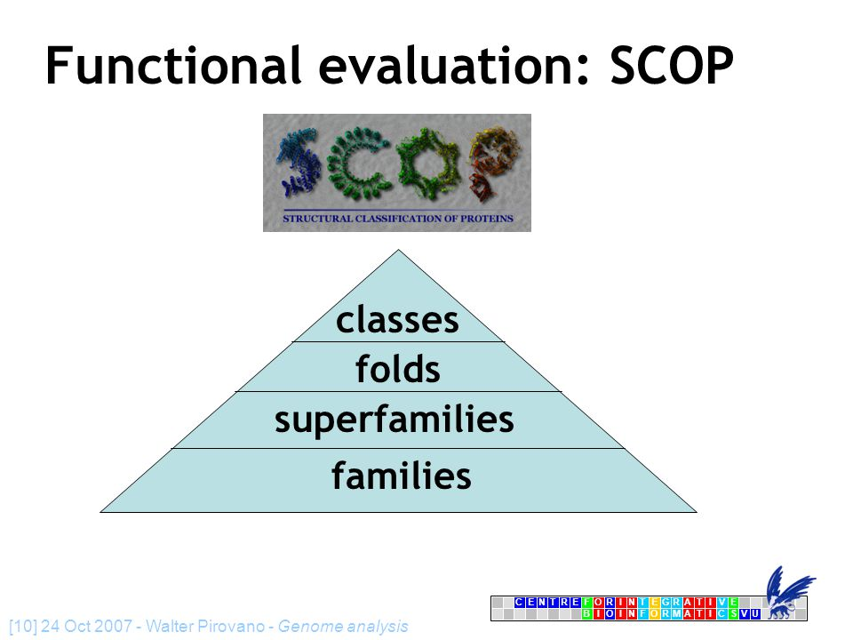 CENTRFORINTEGRATIVE BIOINFORMATICSVU E [10] 24 Oct 2007 - Walter Pirovano - Genome analysis Functional evaluation: SCOP folds superfamilies families classes