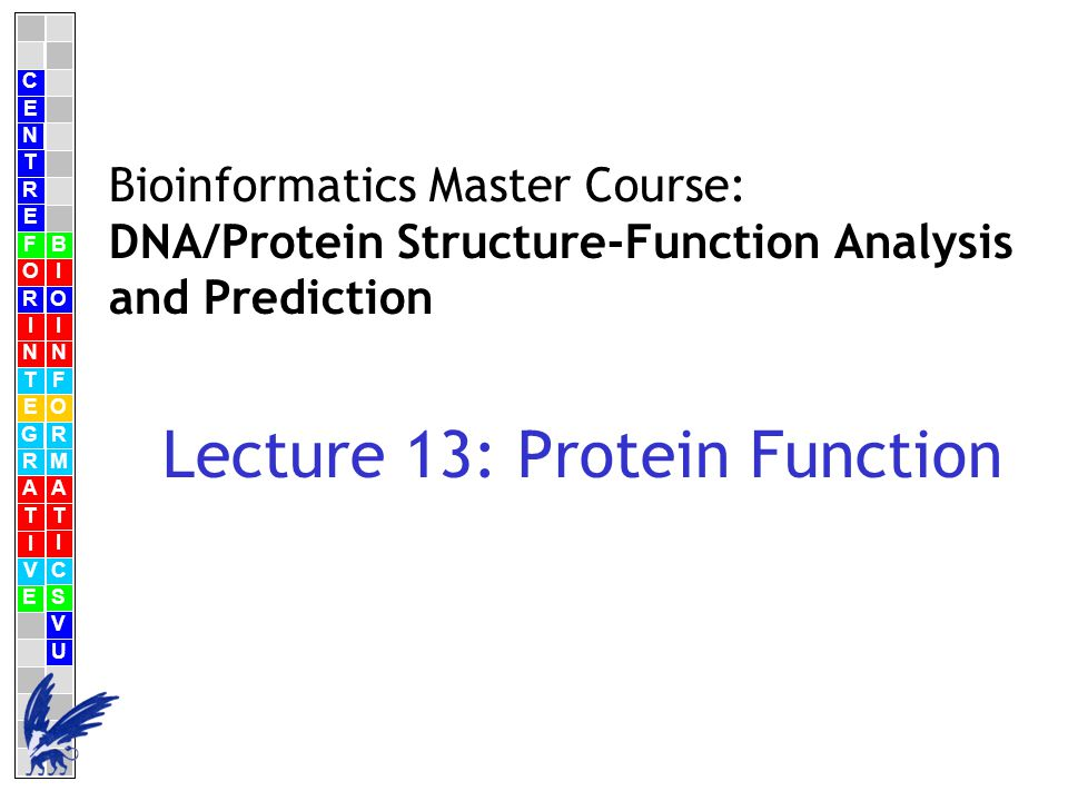 C E N T R F O R I N T E G R A T I V E B I O I N F O R M A T I C S V U E Bioinformatics Master Course: DNA/Protein Structure-Function Analysis and Prediction Lecture 13: Protein Function
