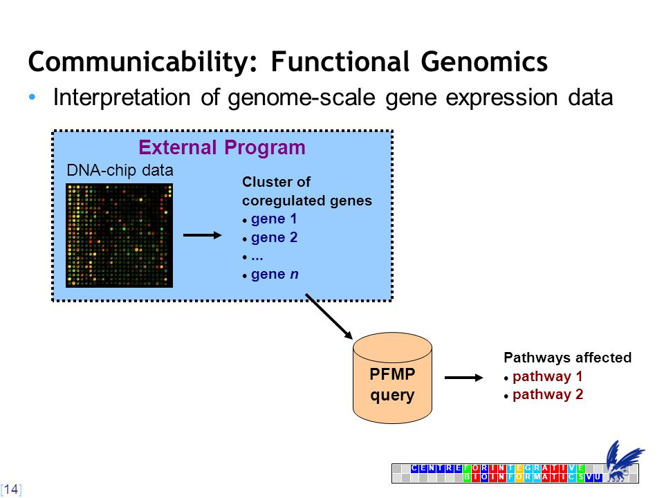 [14] CENTRFORINTEGRATIVE BIOINFORMATICSVU E Communicability: Functional Genomics Interpretation of genome-scale gene expression data External Program DNA-chip data Cluster of coregulated genes gene 1 gene 2...