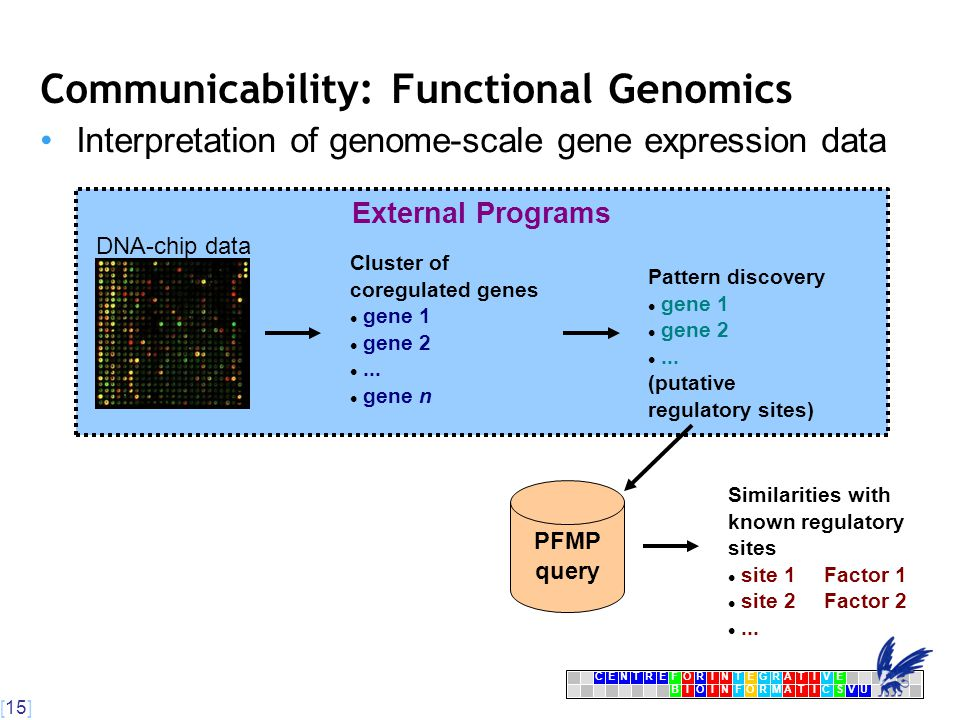 [15] CENTRFORINTEGRATIVE BIOINFORMATICSVU E Communicability: Functional Genomics Interpretation of genome-scale gene expression data External Programs DNA-chip data Cluster of coregulated genes gene 1 gene 2...
