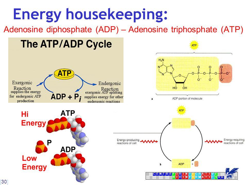 [30] CENTRFORINTEGRATIVE BIOINFORMATICSVU E Energy housekeeping: Adenosine diphosphate (ADP) – Adenosine triphosphate (ATP)