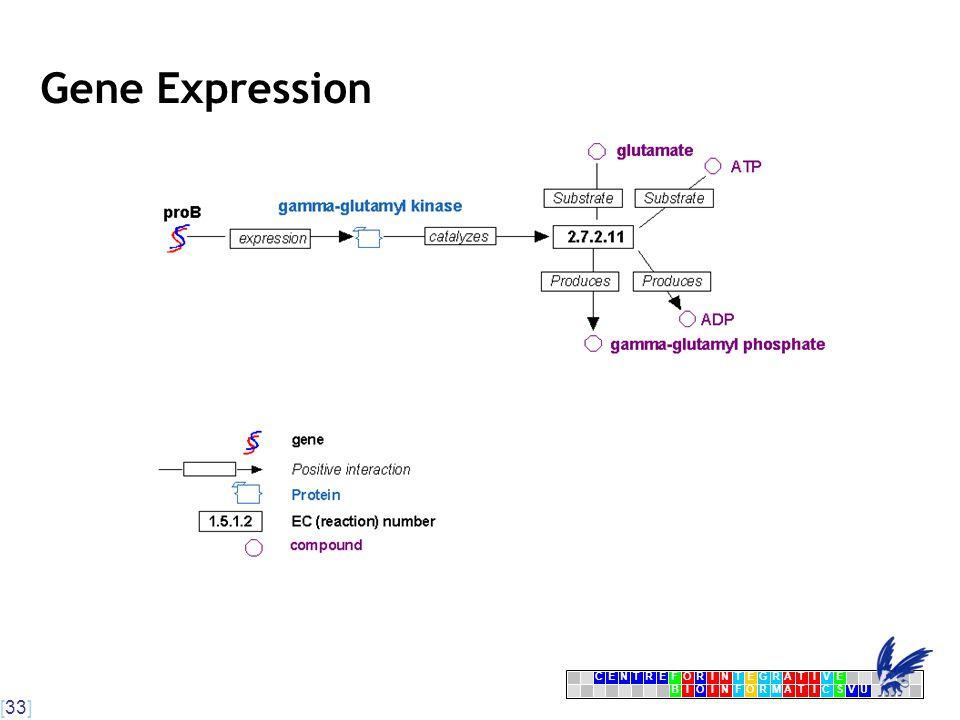 [33] CENTRFORINTEGRATIVE BIOINFORMATICSVU E Gene Expression