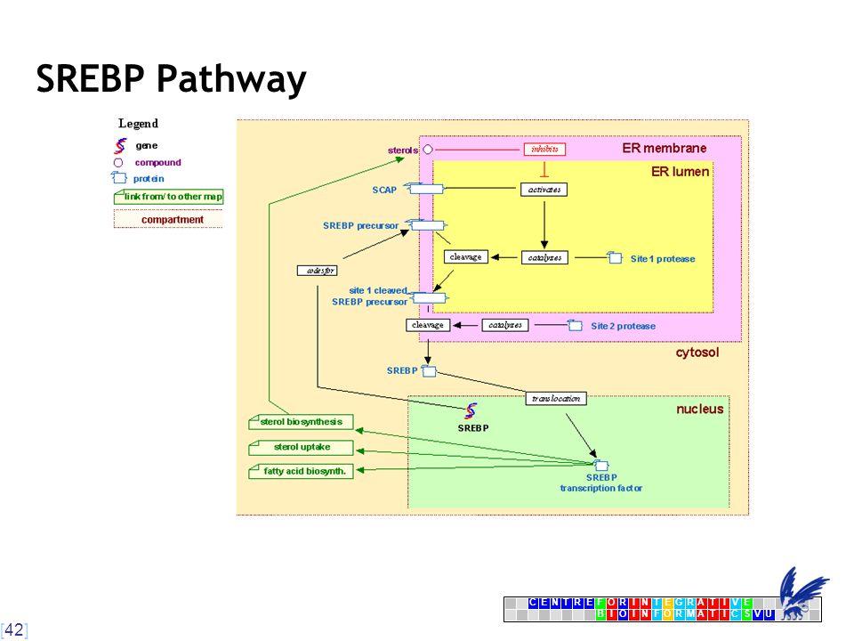 [42] CENTRFORINTEGRATIVE BIOINFORMATICSVU E SREBP Pathway