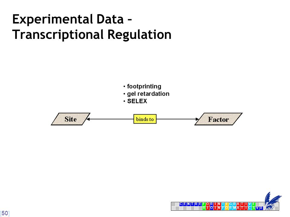 [50] CENTRFORINTEGRATIVE BIOINFORMATICSVU E Experimental Data – Transcriptional Regulation