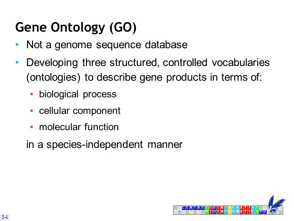 [54] CENTRFORINTEGRATIVE BIOINFORMATICSVU E Gene Ontology (GO) Not a genome sequence database Developing three structured, controlled vocabularies (ontologies) to describe gene products in terms of: biological process cellular component molecular function in a species-independent manner