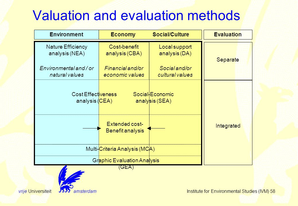 vrije Universiteit amsterdam Institute for Environmental Studies (IVM) 58 Valuation and evaluation methods EnvironmentEconomy Social/Culture Evaluation Cost Effectiveness analysis (CEA) Social-Economic analysis (SEA) Extended cost- Benefit analysis Integrated Nature Efficiency analysis (NEA) Environmental and / or natural values Cost-benefit analysis (CBA) Financial and/or economic values Separate Local support analysis (DA) Social and/or cultural values Multi-Criteria Analysis (MCA) Graphic Evaluation Analysis (GEA)