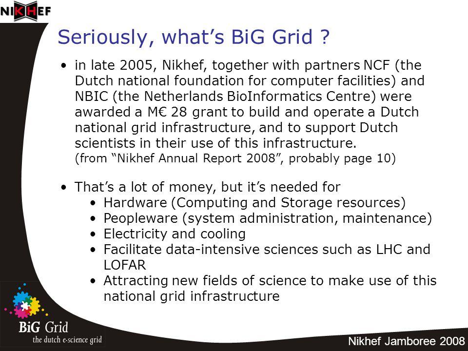 Nikhef Jamboree 2008 Seriously, what's BiG Grid .