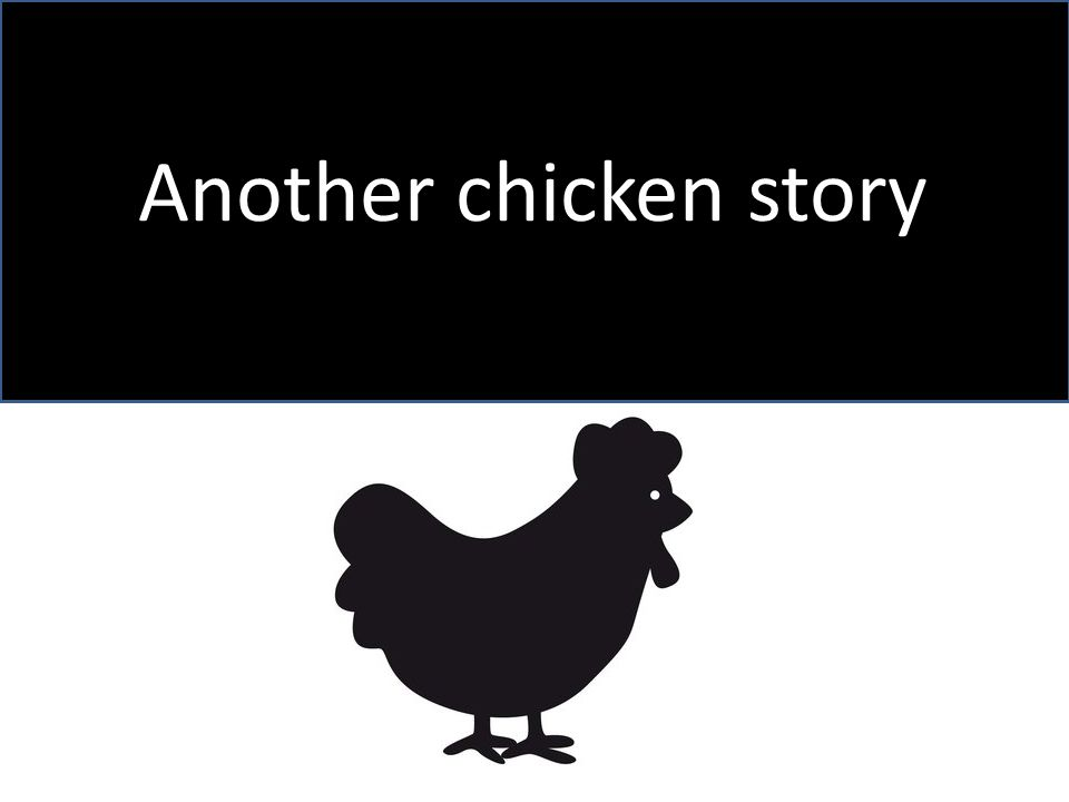 Another chicken story