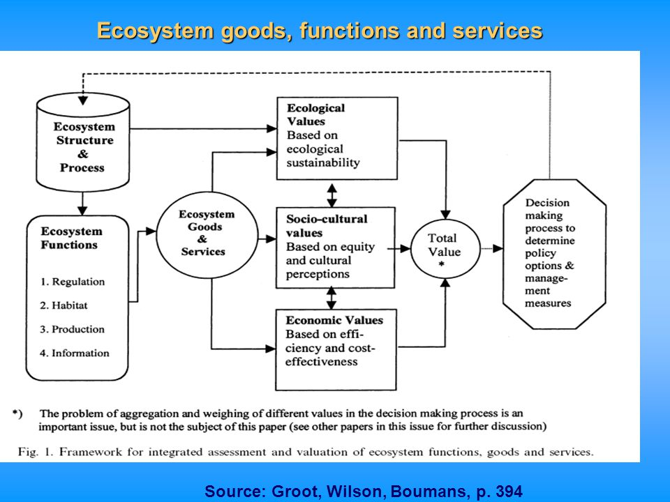 Ecosystem goods, functions and services Source: Groot, Wilson, Boumans, p. 394