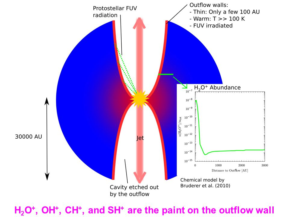 H 2 O +, OH +, CH +, and SH + are the paint on the outflow wall