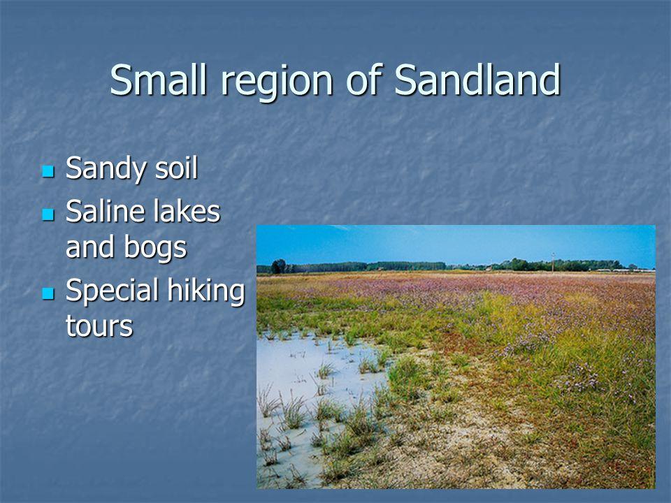 Small region of Sandland Sandy soil Sandy soil Saline lakes and bogs Saline lakes and bogs Special hiking tours Special hiking tours