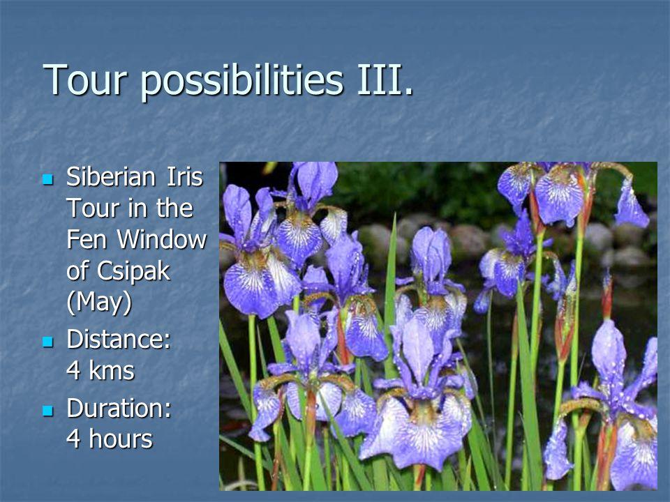 Tour possibilities III. Siberian Iris Tour in the Fen Window of Csipak (May) Siberian Iris Tour in the Fen Window of Csipak (May) Distance: 4 kms Dist