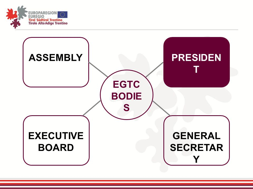 EGTC BODIE S ASSEMBLY EXECUTIVE BOARD GENERAL SECRETAR Y PRESIDEN T