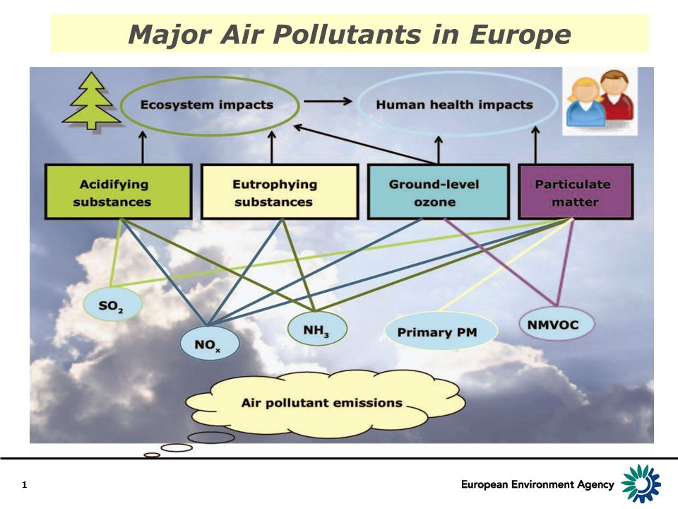 1 Major Air Pollutants in Europe