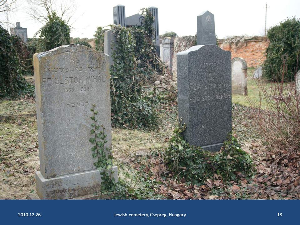 2010.12.26.Jewish cemetery, Csepreg, Hungary12