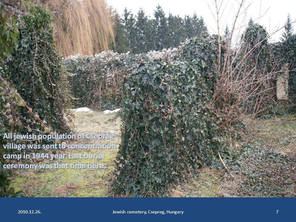 2010.12.26.Jewish cemetery, Csepreg, Hungary7 All jewish population of Csepreg village was sent to concentration camp in 1944 year.