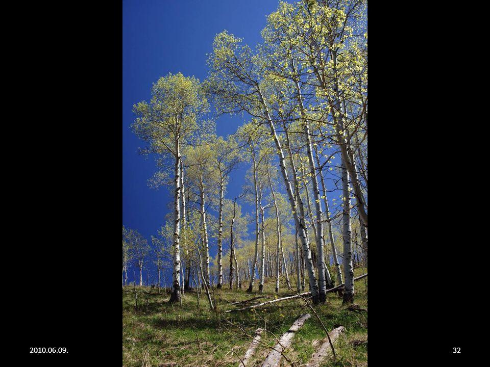 2010.06.09.Rocky Mountain31