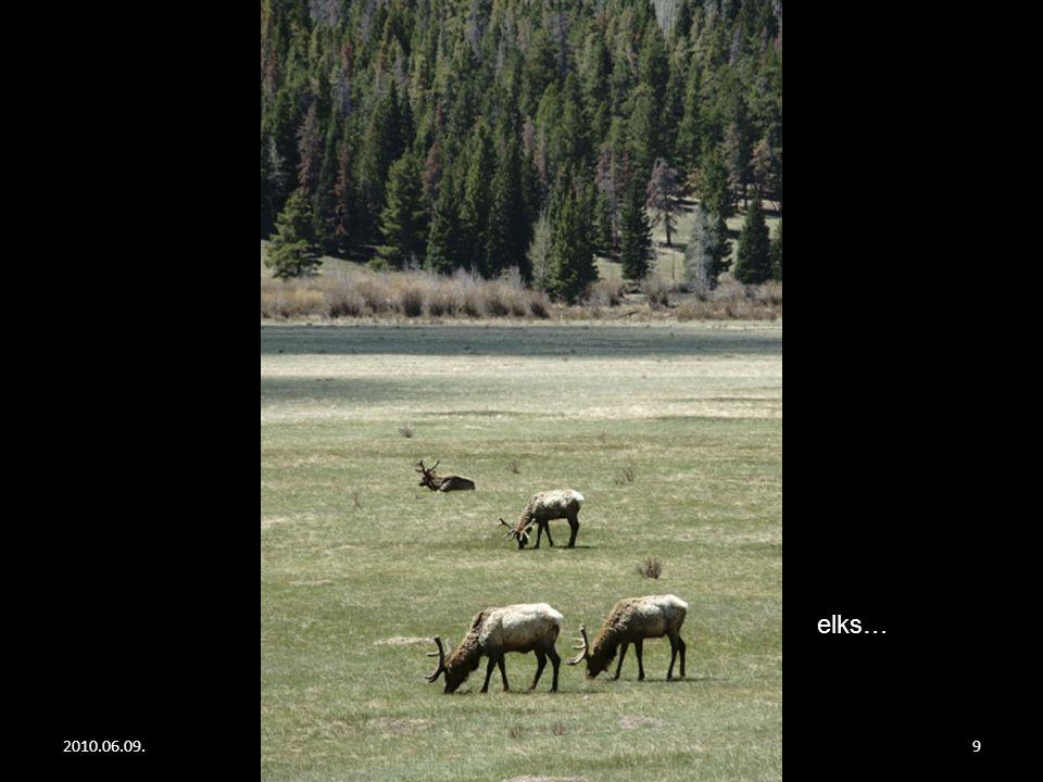 2010.06.09.Rocky Mountain8