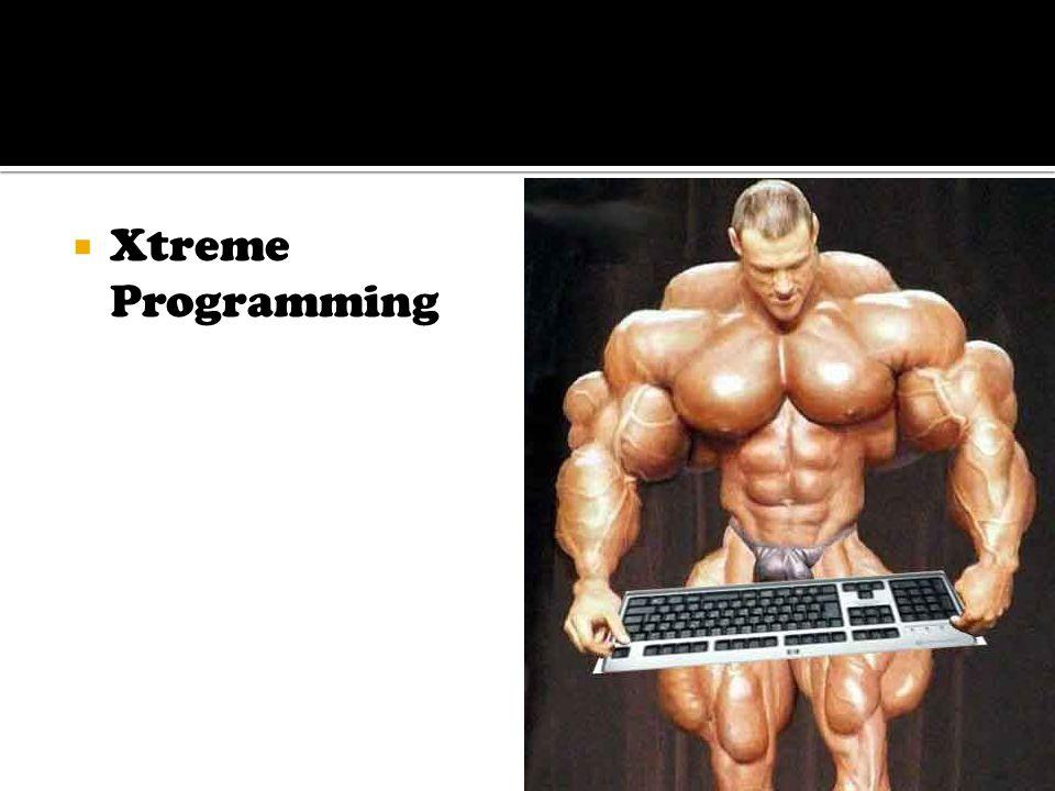  Xtreme Programming